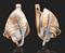 Серьги арт. 02-4132-00-000-1111-48-669, Золото 585 пробы(красн+белое), производитель ООО ТД Платина Кострома. Россия. (вес 4,12 г) - фото 6863